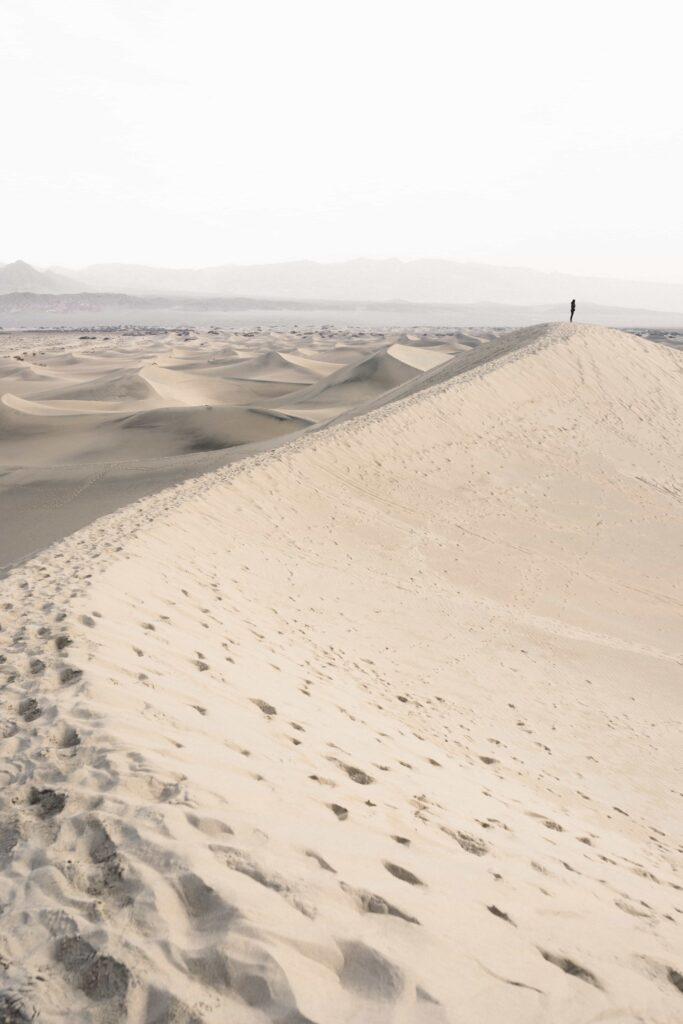 Vastentijd veertigdagentijd woestijn